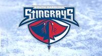 Stingrays - Thumbnail Generic.jpg